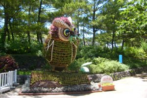 Hi there! You want fish, I`ll show you a fish! A topiary owl welcomes you to Ocean Expo Park, home of Churaumi Aquarium.