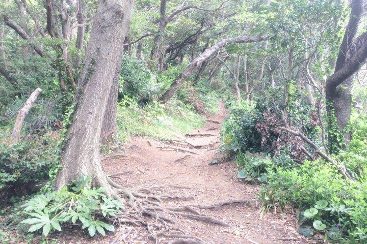 Hiking the Miura Alps