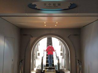 A escada rolante que leva ao Observatório do Jardim Flutuante parece-se quase com uma escada para o paraíso