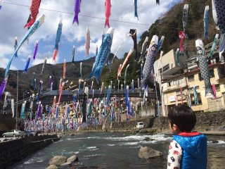A little kid amazed with the carp streamers