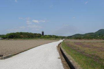 Cycle the Kibi Plain