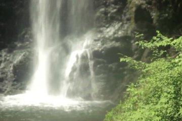 منتزه مينوه في أوساكا