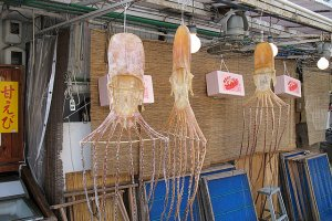 Dried Octopus in the fishing village called Amanohashidate north of Kyoto