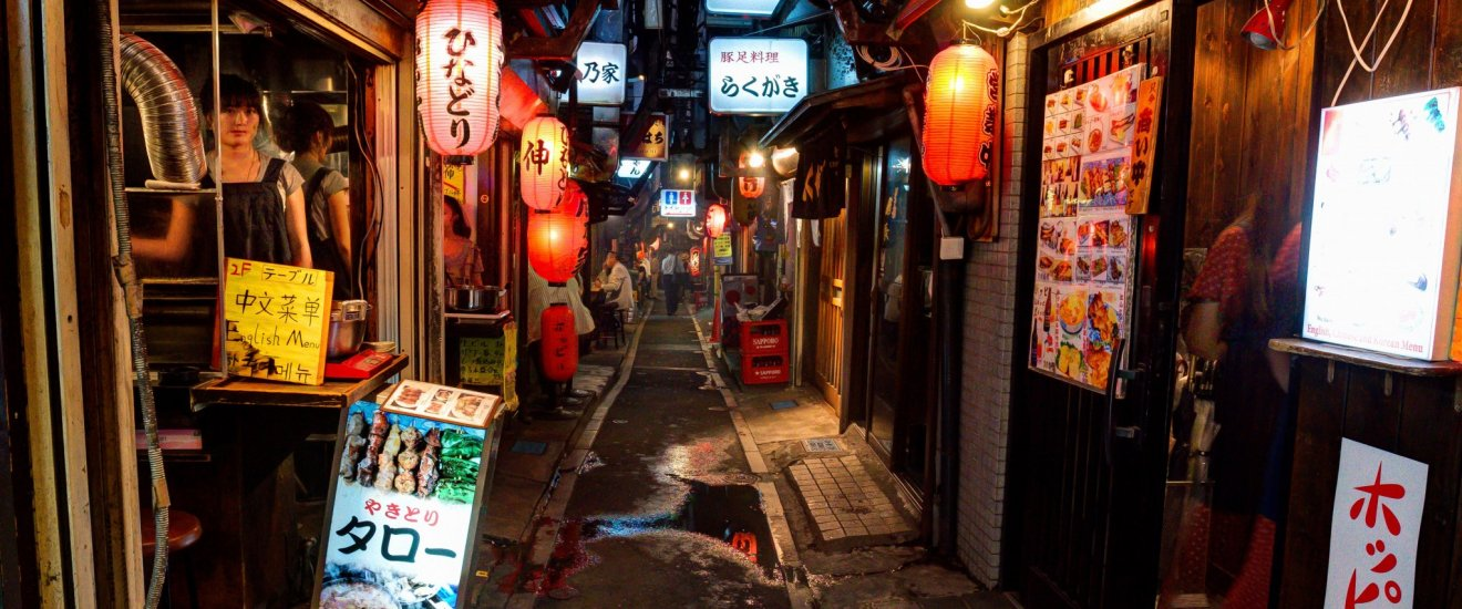 Omoide Yokocho, also known as Memory Lane and (so I am told) Piss Alley