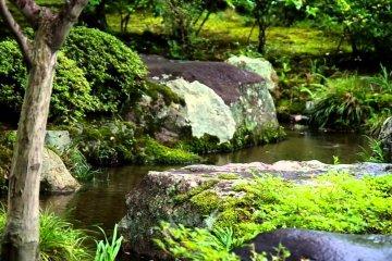 Vườn Nishimura - Kyoto