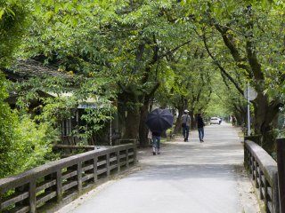 This straight thoroughfare lined with cherry trees below the historic gates was where samurai trained in horse riding techniques