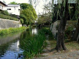 Un chemin le long du canal