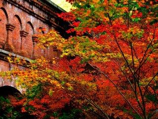 Великолепные красные клёны добавляют яркости красному кирпичному зданию... как восхитительно!
