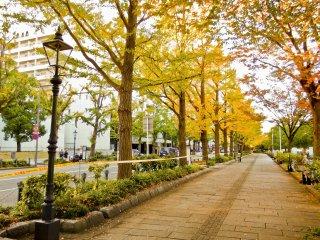 Walking back southwards along Yamashita-Dori