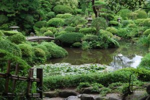 The beautifully landscaped garden of the Honma's Seienkaku Residence