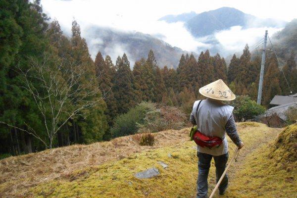 Hiking in the hills of Totsukawa