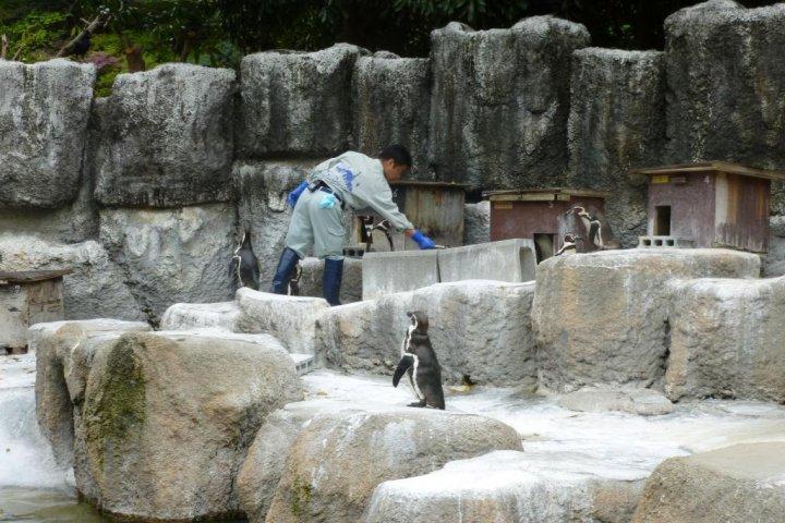Hamamatsu Municipal Zoo