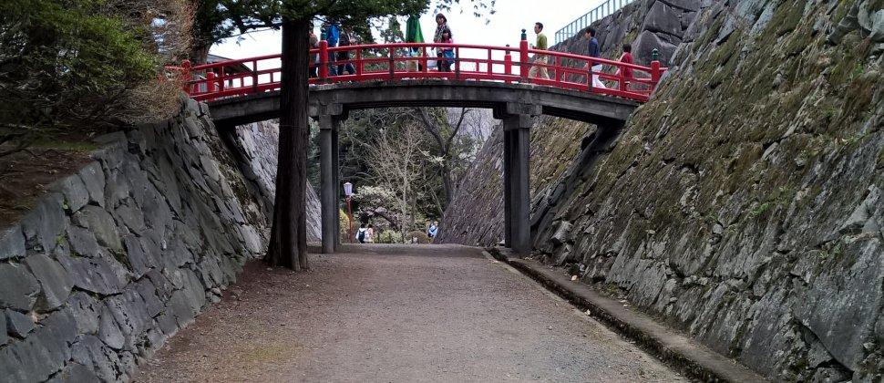 Iwate Park in Full Bloom