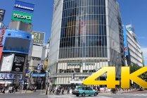 Giao lộ Shibuya ở Tokyo