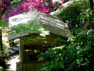 One of the garden's tea houses is surrounded by azaleas