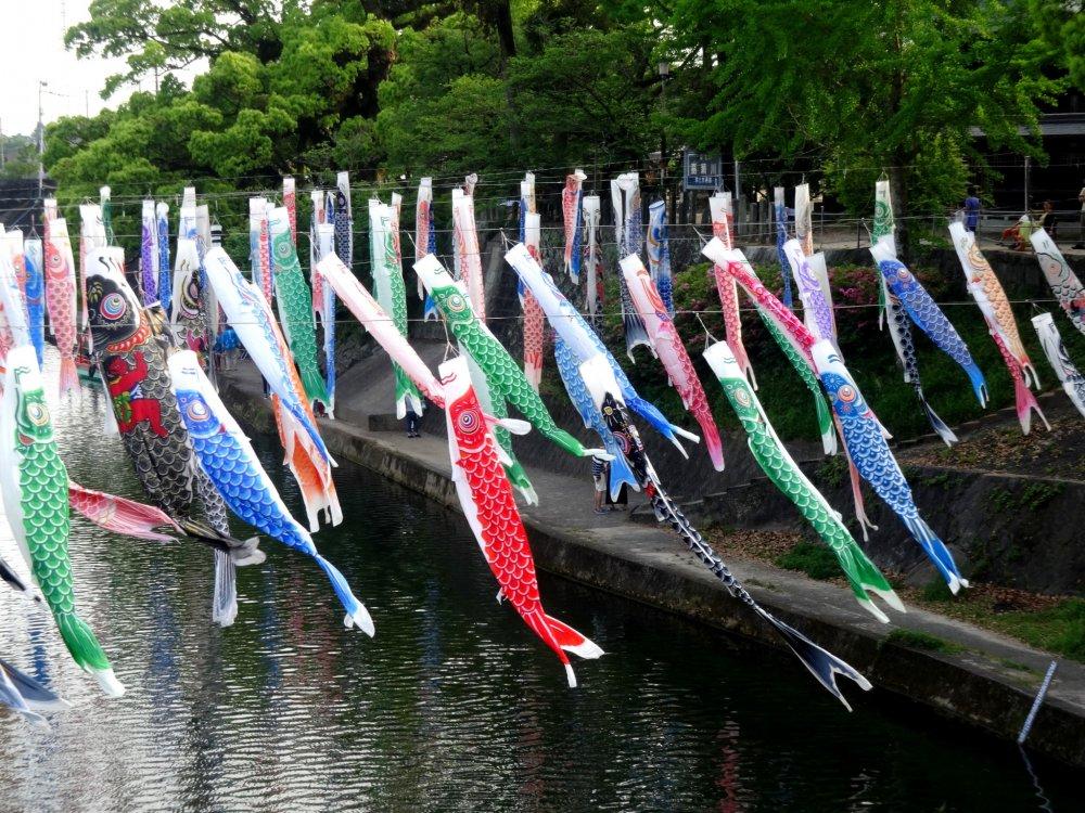 Environ 300 banderoles sont exposées