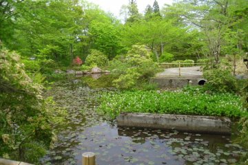Akiu Falls Botanical Garden