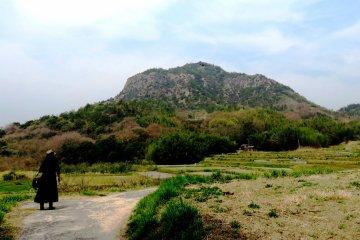 Cycling in Teshima