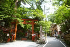 Visitors can't miss the red torii that marks the entrance to the main shrine.