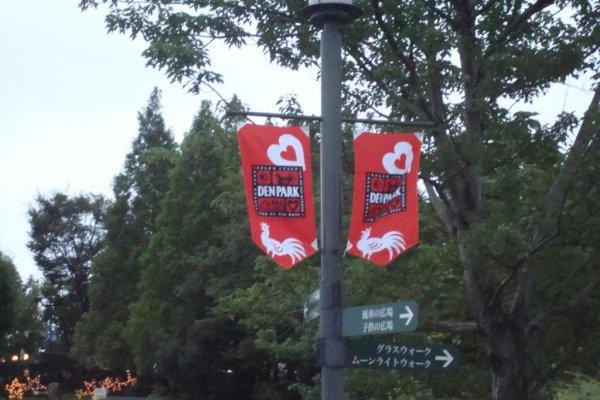 Denpark flags