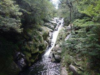 Cascade dans la forêt de Shiratani Unsuikyo