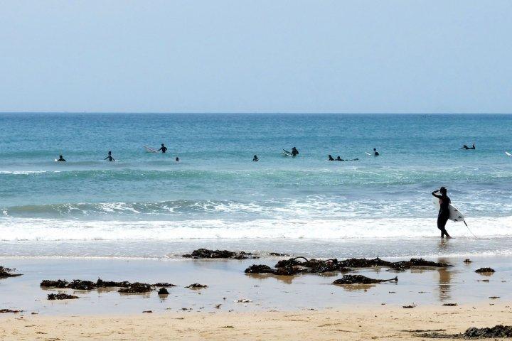 Vues sur les Surfeurs et l'Océan