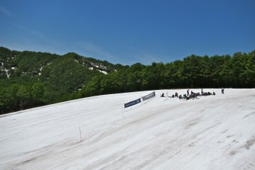 Short Sleeve Snowboarding