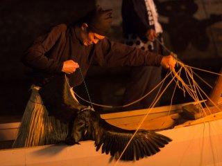 Le pêcheur reçoit un poisson du bec d'un cormoran