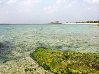 A praia caracteriza-se por areias de coral de cor branca, que elegantemente contrastam com o oceano, produzindo uma cor verde cintilante