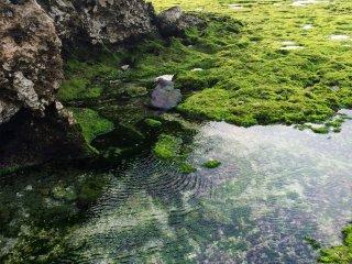 Piscina interior e formações rochosas na costa