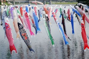 people celebrate Children's Day by flying carp streamers