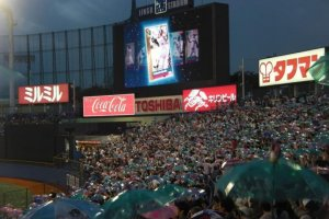 "Tokyo Yakult Swallows fans celebrating a run with their famous ""umbrella dance."""
