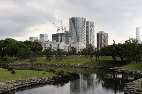 Le jardin Hama Rikyu, un des poumons verts de Tokyo, enclavé au milieu des gratte-ciels de Shiodome