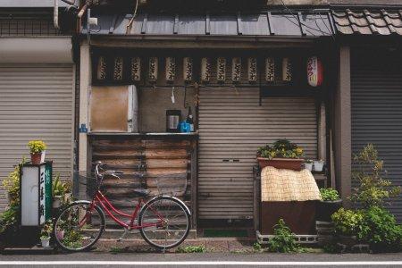 Gatos Taiyaki em Yanaka Ginza