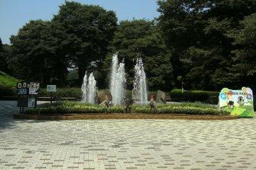 Shinrin park in Saitama