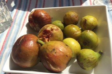 Kitchen Sawa: A Fig Cafe