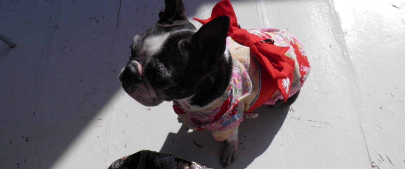 Elizabeth dans son kimono d'hiver