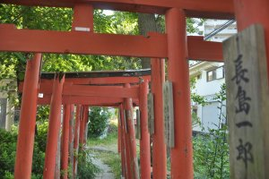 Beautiful installation in the Kanayama shrine