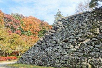 ฤดูใบไม้ร่วงที่ซากปราสาทโคะโมะโระ