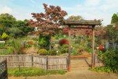 สวนสาธารณะคิบะในโตเกียว