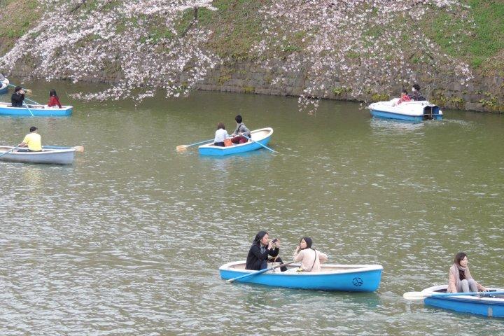 Le Jardin Kitanomaru à Tokyo