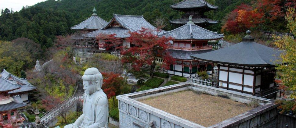 Nara's Tsubosaka Temple