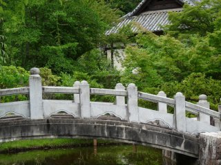 the bridge over the pond