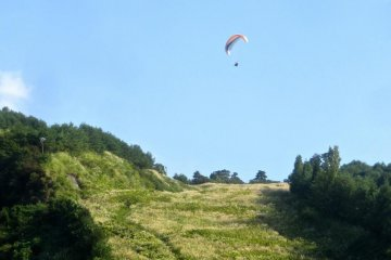 Paragliding with the Wind Kids