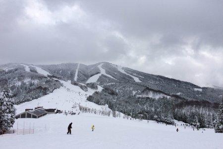 The Best of Winter in Fukui