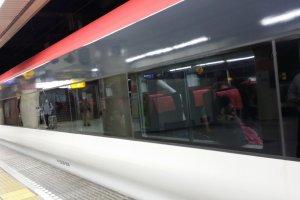 Narita Express Cabin
