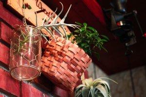 L'enseigne du Wooden House couverte de plantes