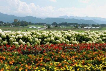Summer Road Trip in Gunma