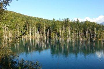 Голубой пруд Биэй и водопады Сирахидзи
