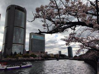 أوساكا: سيدة الأعمال